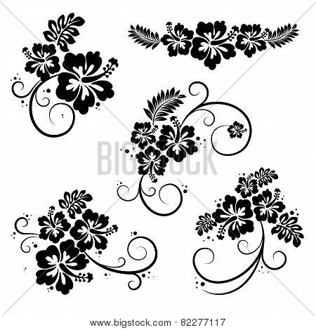 Collection of hibiscus flourish decorative design elements