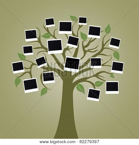 Big tree with photo cards on color background