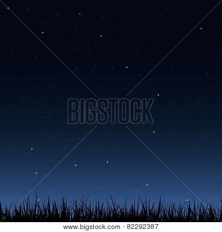 Seamless Night Sky And Grass