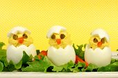 stock photo of boil  - Fun Easter breakfast of hatching chicks made of boiled eggs with yellow background - JPG