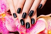 image of black woman spa  - Beautiful women hands with black manicure after Spa procedures  - JPG
