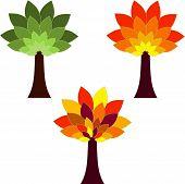 picture of fall trees  - isolated seasonal tree vectors - JPG