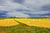 foto of iceland farm  - Rural pastoral after harvesting - JPG