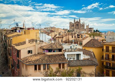 Residential Houses And Cathedral La Seu