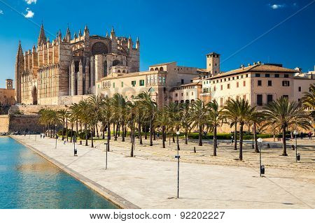 Parc Del Mar Near Palma Cathedral