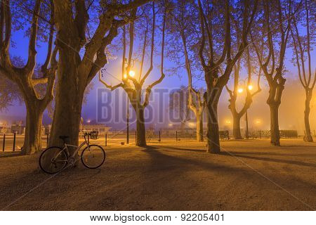 Bicycle Standing In Evening Park. France. Camargue.