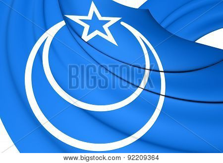 Flag Of Second East Turkestan Republic