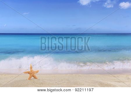 Beach Background Scene In Summer On Vacation With Sea Star And Copyspace