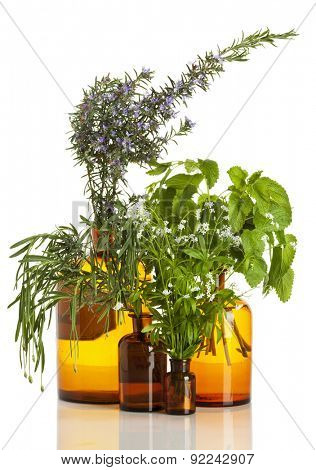 Aromatic herbs - Rosemary, lavender, woodruff and lemon balm - in old apothecary bottles isolated on white