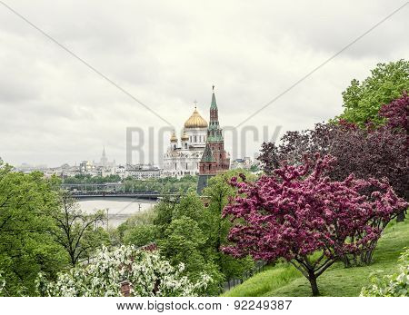 Beautiful Cathedral of Christ the Savior