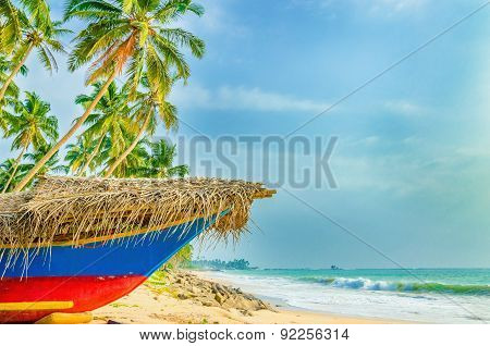 Exotic beach with colorful boat, tall palm trees