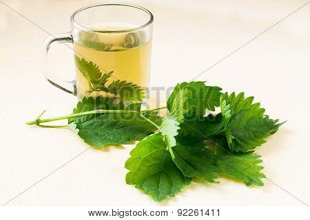 Herbal Medicine: Fresh Nettle And Broth