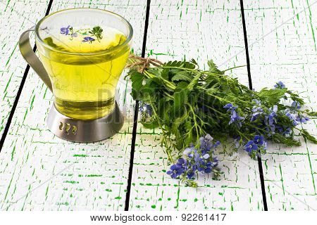 Herbal Medicine: Veronica Chamaedrys In The Beam And The Broth