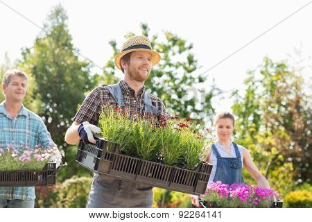 Gardeners carrying flower pots in crates at garden