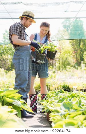 Gardeners discussing over potted plants at garden