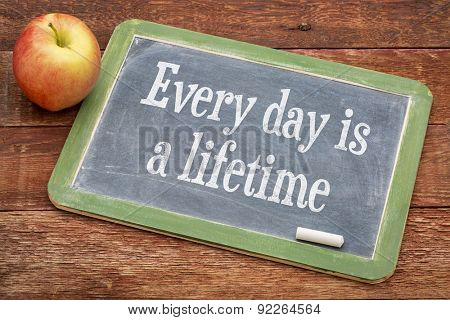 Every day is a lifetime - words of wisdom on a slate blackboard against red barn wood