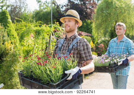 Male gardeners walking while carrying flower pots in crates at plant nursery