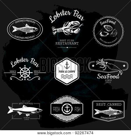 Vector Illustration On Blackboard. Logo Set With Fish.