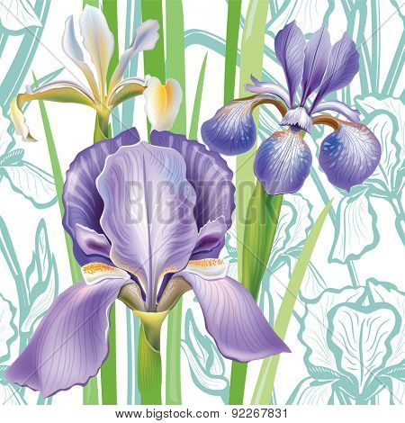 Seamless floral pattern with irises