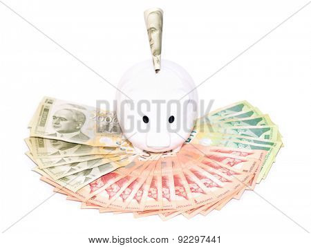 Piggy bank on a fan of Serbian money isolated on white