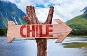 foto of pain-tree  - Chile wooden sign with mountains background - JPG