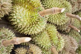 stock photo of south east asia  - Thai Durian - JPG