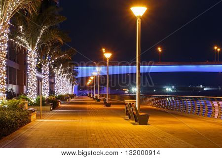 pier of district Marina in Dubai at night