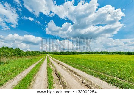 Wide road by the field with flowers at hot day summer time.
