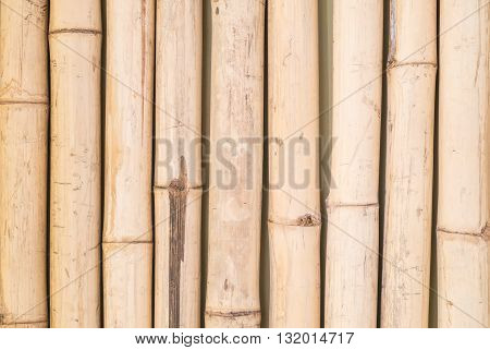 Closeup surface of bamboo wall texture background