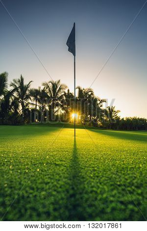 In the hole, golf court in Punta Cana, Dominican Republic