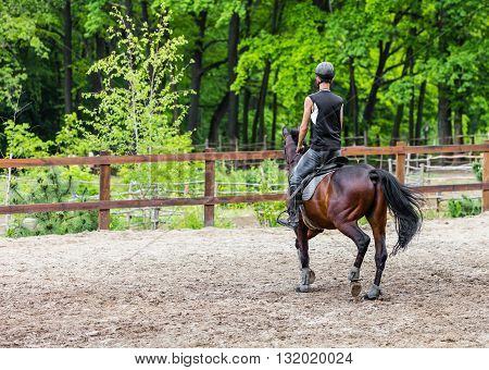male athlete rides on horse exercise outdoors