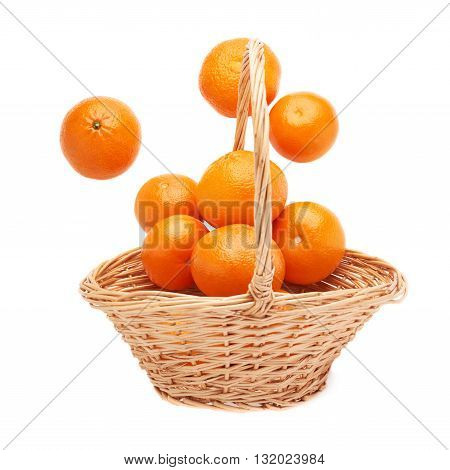 Wicker basket full of multiple ripe orange fresh juicy tangerines, composition isolated over the white background