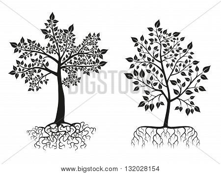 Black trees and roots silhouettes with leaves. Vector illustration set