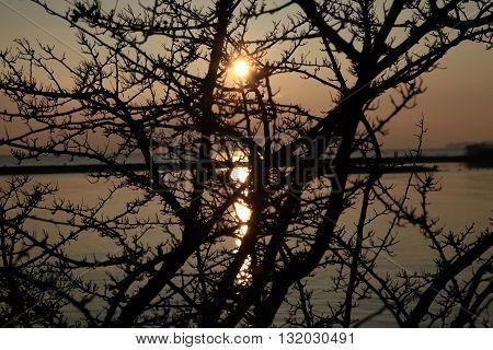 Contre-jour sur le lac Léman en hiver