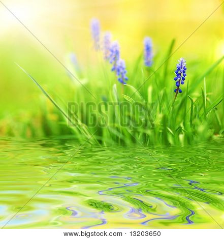 Purple flowers reflected in rendered water