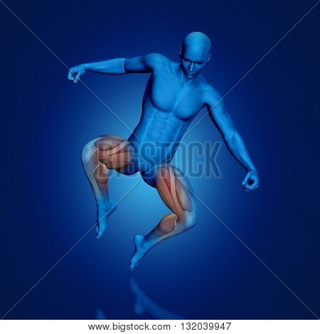 3D render of a blue male medical figure with partial muscle map in jump pose