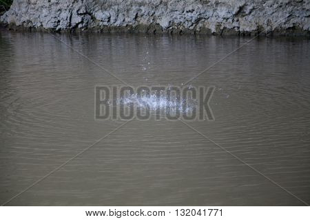 pond with water drops nature splash liquid