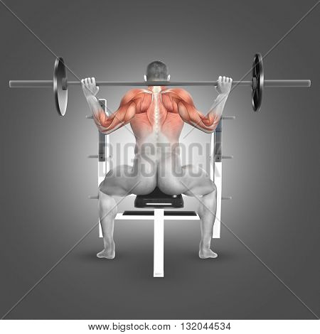 3D render of a male figure in seated barbell press behind neck position with muscles used highlighted