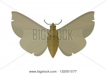 Vampire butterfly of Death