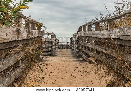 Sand-covered pathway to beach at First Landing State Park in Virginia Beach, Virginia.