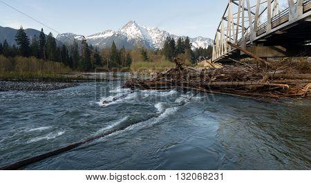 Logs jam up under the bridge on the Sauk