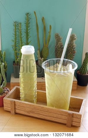 Ice Citronella water in plastic container with cactus as background