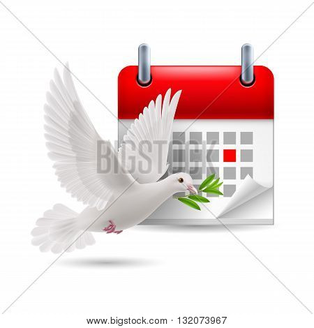 White dove with olive branch and calendar with marked day. Peace day concept