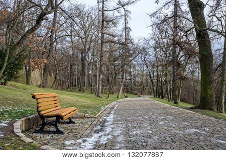 Benches in a deserted winter park in Prague