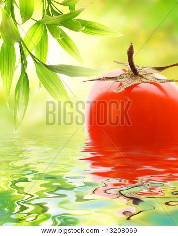Fresh ripe tomato reflected in water