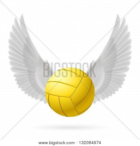 Realistic volley ball with white wings emblem