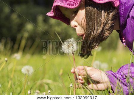 beautiful girl blowing on white dandelion, nature