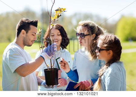 volunteering, charity, people and ecology concept - group of volunteers with clipboard planting trees in park