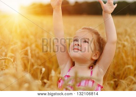 Girl on a wheat field in the sunset.
