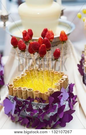 strawberries on skewers for chocolate fountains for wedding dessert.